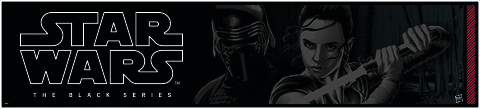 Hasbro Banner Black Series
