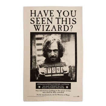 Harry Potter - Have You Seen This Wizard? Poster Tea Towel