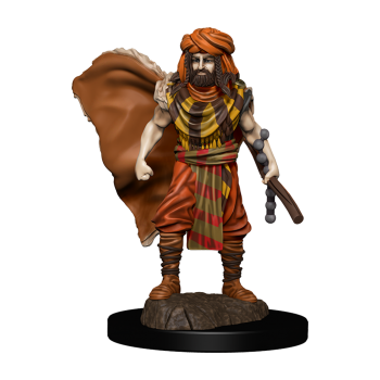 D&D Icons of the Realms: Premium Painted Figure - Human Druid Male (6 Units)