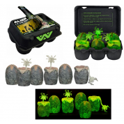 Aliens Xenomorph Egg ´GLow-In-The-Dark´ 6-Pack in Collectible Box (6+3 Facehuggers)