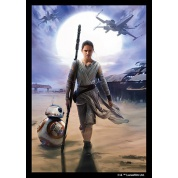 FFG - Star Wars Sleeves: Rey (50 Sleeves) - EN