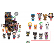 Funko Mystery Minis DC Comics - Heroes with Pets Variant Mix 1 Mini Figure 6cm Display Box (random 12 pc)