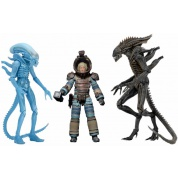 Aliens Series 11 Deluxe Action Figures 18-23cm Assortment (14)