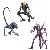 Alien vs Predator - Alien Arcade 7-inch Scale Action Figure Assortment (14)