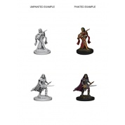 Pathfinder Deep Cuts Unpainted Miniatures - Human Female Bard (6 Units)