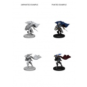 Pathfinder Deep Cuts Unpainted Miniatures - Elf Female Paladin (6 Units)