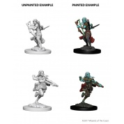 D&D Nolzur's Marvelous Miniatures - Air Genasi Female Rogue (6 Units)