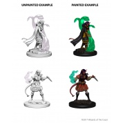 D&D Nolzur's Marvelous Miniatures - Tiefling Female Sorcerer (6 Units)