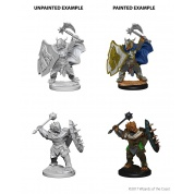 D&D Nolzur's Marvelous Miniatures - Dragonborn Male Paladin (6 Units)