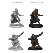 Pathfinder Deep Cuts Unpainted Miniatures - Human Male Rogue (6 Units)