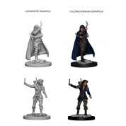 Pathfinder Deep Cuts Unpainted Miniatures - Human Female Rogue (6 Units)