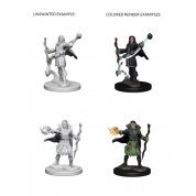 Pathfinder Deep Cuts Unpainted Miniatures - Elf Male Sorcerer (6 Units)
