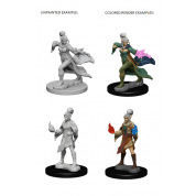 Pathfinder Deep Cuts Unpainted Miniatures - Elf Female Sorcerer (6 Units)