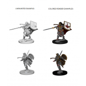 Pathfinder Deep Cuts Unpainted Miniatures - Human Female Paladin (6 Units)