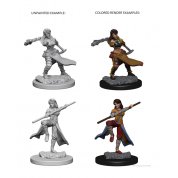 D&D Nolzur's Marvelous Unpainted Miniatures - Human Female Monk (6 Units)