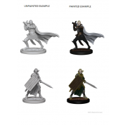 Pathfinder Deep Cuts Unpainted Miniatures - Elf Male Paladin (6 Units)