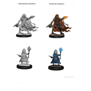Pathfinder Deep Cuts Unpainted Miniatures - Evil Wizards (6 Units)