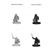 D&D Nolzur's Marvelous Miniatures - Dwarf Female Paladin (6 Units)