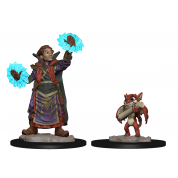 WizKids Wardlings RPG Figures: Boy Wizard & Imp (6 Units)