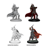 Pathfinder Battles Deep Cuts Unpainted Miniatures - Female Knights / Gray Maidens (6 Units)