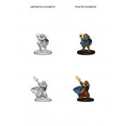 D&D Nolzur's Marvelous Unpainted Miniatures - Dwarf Female Wizard (6 Units)