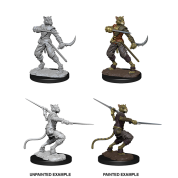 D&D Nolzur's Marvelous Miniatures - Male Tabaxi Rogue (6 Units)