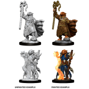 D&D Nolzur's Marvelous Miniatures - Female Dragonborn Sorcerer (6 Units)