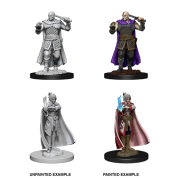 D&D Nolzur's Marvelous Miniatures - Vampire Hunters (6 Units)