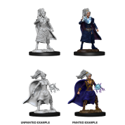 D&D Nolzur's Marvelous Miniatures - Female Human Sorcerer (6 Units)