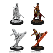 D&D Nolzur's Marvelous Miniatures - Male Half-Elf Monk (6 Units)