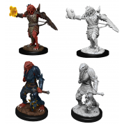 D&D Nolzur's Marvelous Miniatures - Male Dragonborn Paladin (6 Units)
