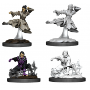 D&D Nolzur's Marvelous Miniatures - Female Human Monk (6 Units)