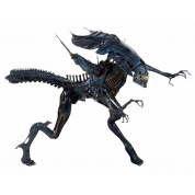 Aliens - Xenomorph Alien Queen Deluxe Boxed Action Figure 38cm / 76cm long (new packaging)