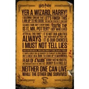 GBeye Maxi Poster - Harry Potter Quotes