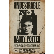 GBeye Maxi Poster - Harry Potter Undesirable No 1