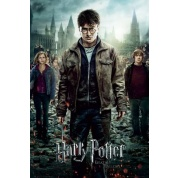 GBeye Maxi Poster - Harry Potter Part 2 One Sheet