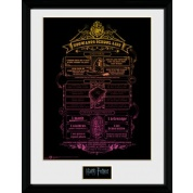 GBeye Collector Print - Harry Potter Hogwarts List 30x40cm