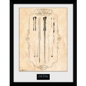 GBeye Collector Print - Harry Potter Harry's Wand 30x40cm