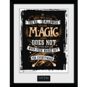 GBeye Collector Print - Harry Potter Wands Out 30x40cm