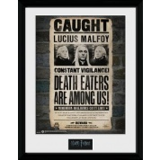 GBeye Collector Print - Harry Potter Lucius 30x40cm
