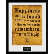 GBeye Collector Print - Harry Potter Happiness Can Be 30x40cm