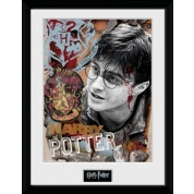GBeye Collector Print - Harry Potter 30x40cm