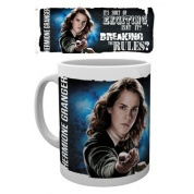 GBeye Mug - Harry Potter Dynamic Hermione