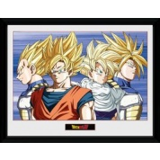 GBeye Collector Print - Dragon Ball Z Group 30x40cm