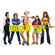 GBeye Maxi Poster - Birds of Prey Group