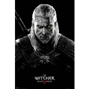 GBeye Maxi Poster - The Witcher Toxicity Poisoning