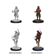 D&D Nolzur's Marvelous Miniatures - Male Tiefling Sorcerer (6 Units)