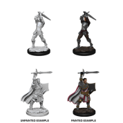 D&D Nolzur's Marvelous Miniatures - Male Human Paladin (6 Units)