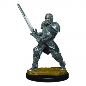 D&D Icons of the Realms Premium Figures: Male Human Fighter (6 Units)