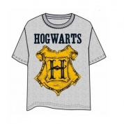Harry Potter Hogwarts gray T-Shirt